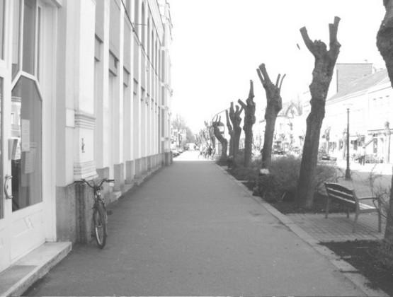 Mohács 05a