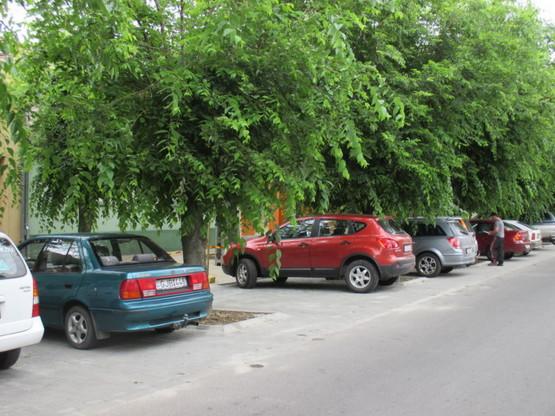 Mohács parkoló10
